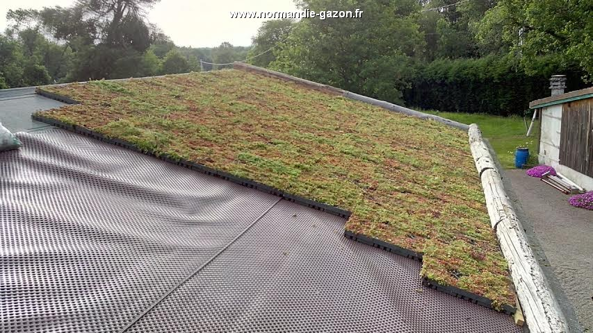 normandie sedum bac toiture vegetale extensive. Black Bedroom Furniture Sets. Home Design Ideas