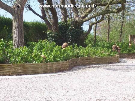Normandie bordure noisetier 200x25cm